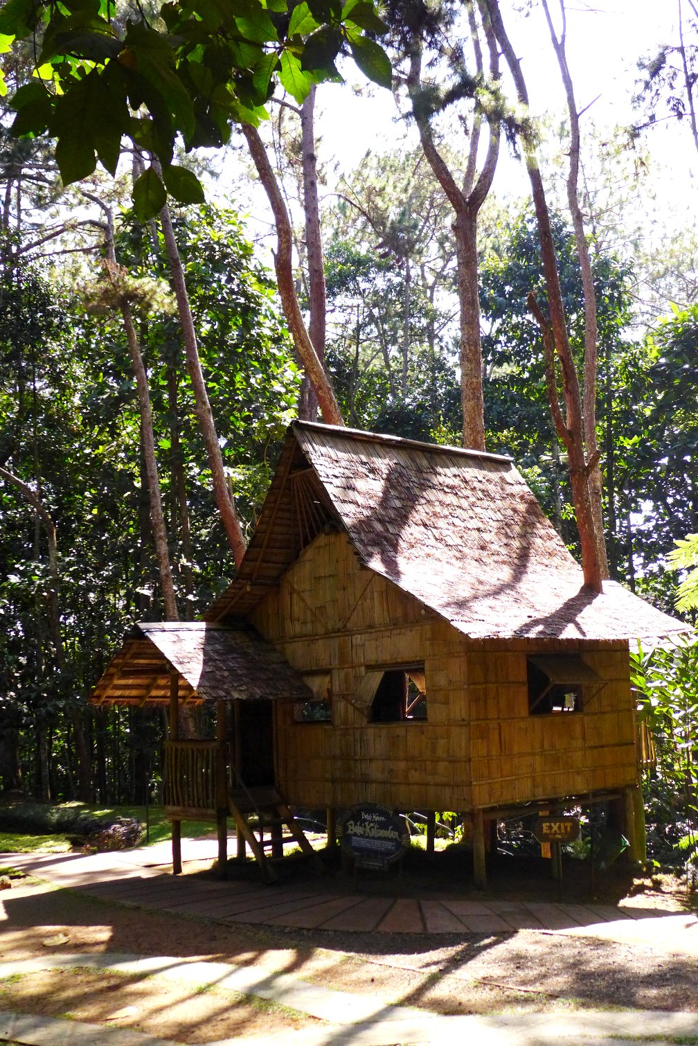 Day trip from Davao City; Eden Nature Park; What to do in Davao City; D.I.Y. Davao