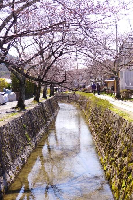 Path of Philosophy; Kyoto; Tetsugaku no michi